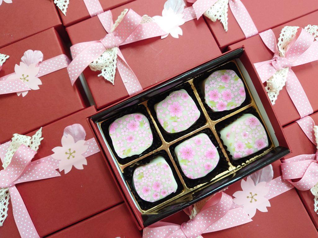 ショコラ・SAKURA