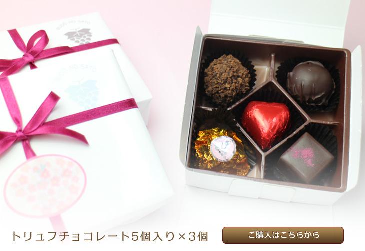 トリュフチョコレート5個入り×3個
